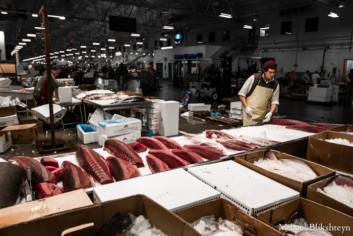 The new fulton fish market at hunts point the bronx for Fish market restaurant nyc
